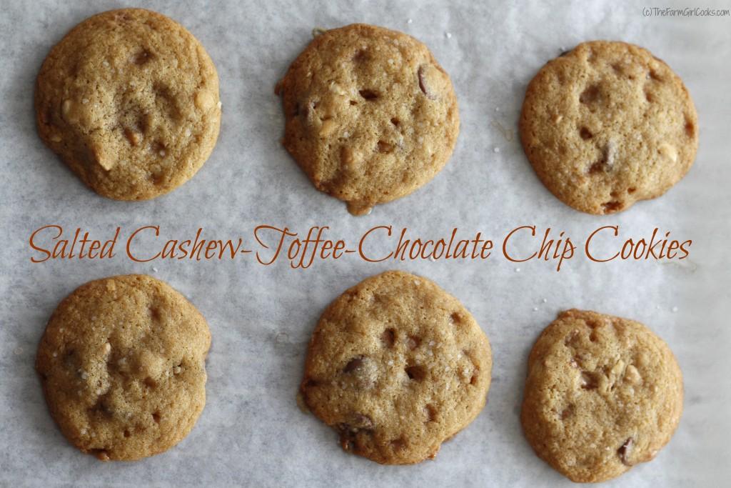 sctcc cookies 001