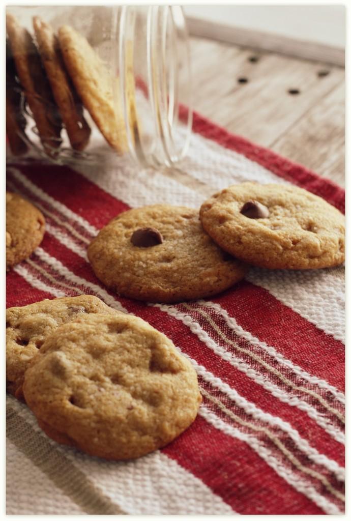 sctcc cookies 005