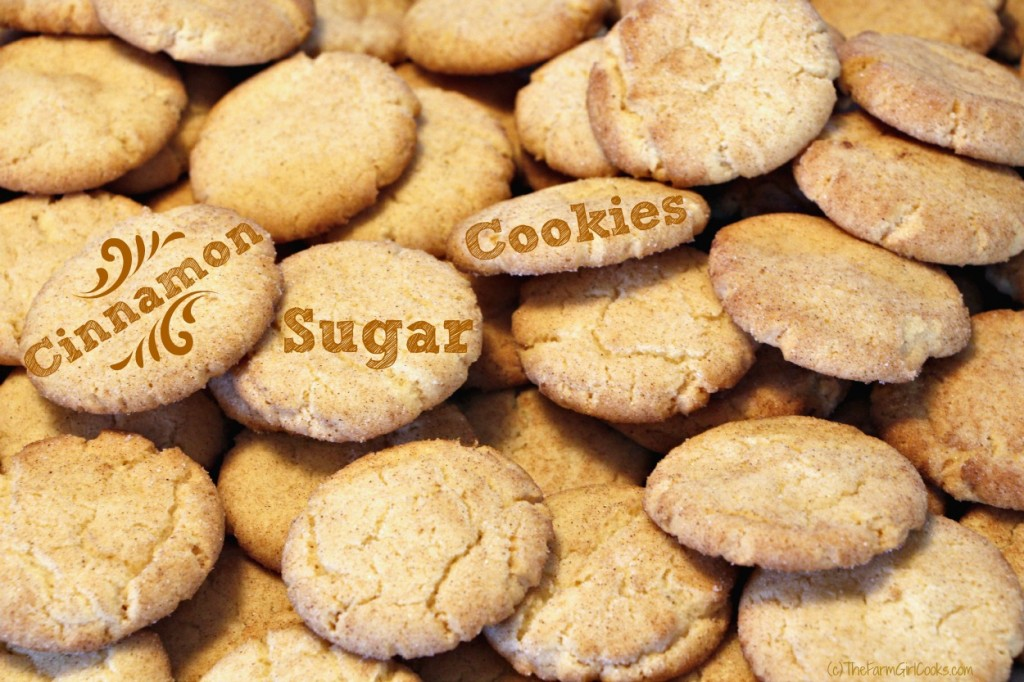 cinn sugar cookies