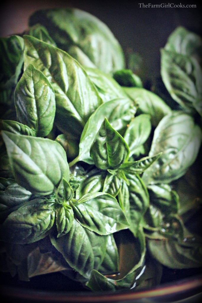 washing basil